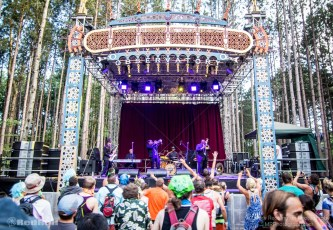 Electric Forest Saturday Photo 44