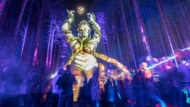 Electric Forest Thursday Photo 89