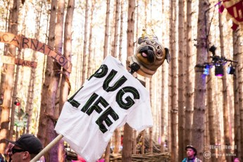 Electric Forest Weekend 1 Saturday Photo 41