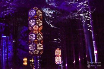 Electric Forest Weekend 1 Sunday Photo 155