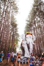 Electric Forest Weekend 1 Thursday Photo 48