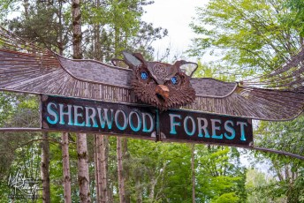 Electric Forest Music Festival 2019 Photo 57