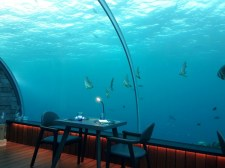 5.8 heißt das Undersea Restaurant des Hurawalhi Island Resorts auf den Malediven, weil es sich 5.8 Meter unter der Wasseroberfläche befindet.