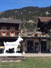 Das Hotel liegt in Gstaad Saanen