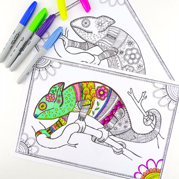 Colouring Pages For Grown Ups Chameleons Red Ted Art Make Crafting With Kids Easy Fun