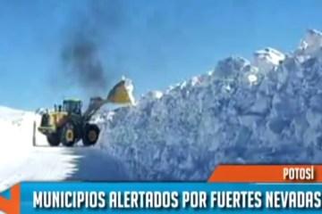 Fuertes nevadas en Potosí