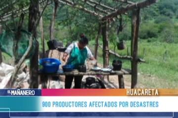 900 PRODUCTORES AFECTADOS POR DESASTRES