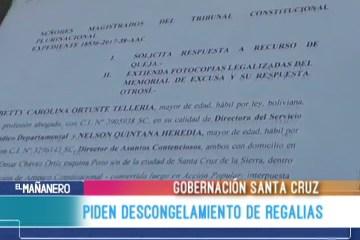 REPRESENTANTES DE LA GOBERNACIÓN DE SANTA CRUZ PIDEN EL DESCONGELAMIENTO DE REGALÍAS