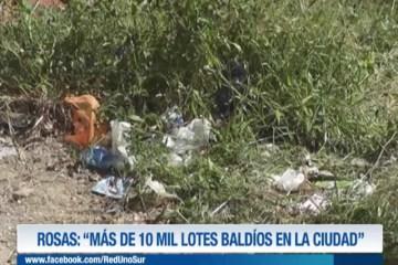 """ROSAS: """"MÁS DE 10 MIL LOTES BALDÍOS EN LA CIUDAD"""""""