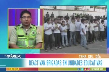 TEMA DEL DÍA: REACTIVAN BRIGADAS EN UNIDADES EDUCATIVAS