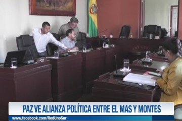 PAZ VE ALIANZA POLÍTICA ENTRE EL MAS Y MONTES
