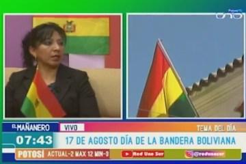 TEMA DEL DÍA: LA TRICOLOR DE BOLIVIA