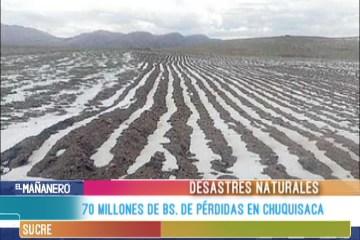 70 MILLONES DE BS. DE PÉRDIDAS EN CHUQUISACA