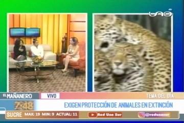 TEMA DEL DÍA: SALVAR A ANIMALES EN PELIGRO DE EXTINCIÓN