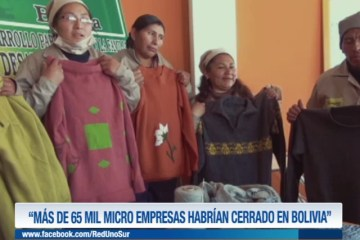 """""""MÁS DE 65 MIL MICRO EMPRESAS HABRÍAN CERRADO EN BOLIVIA"""""""
