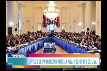 CÍVICOS SE PRONUNCIAN ANTE LA OEA Y EL GRUPO DE LIMA
