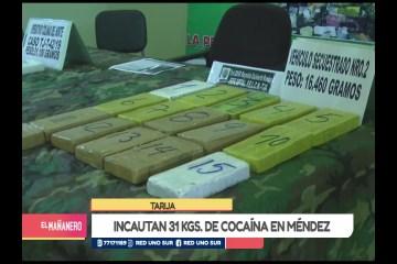 INCAUTAN 31 KILOGRAMOS  DE COCAÍNA EN MÉNDEZ