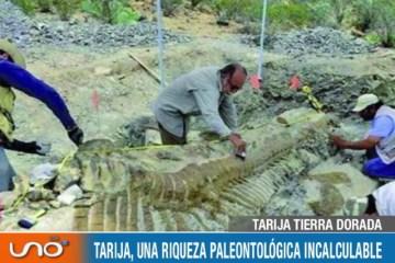 TARIJA TIERRA DORADA: YACIMIENTOS RICOS EN FÓSILES