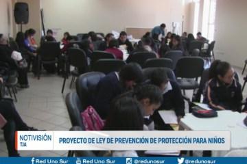 PROYECTO DE LEY DE PREVENCIÓN DE PROTECCIÓN PARA NIÑOS