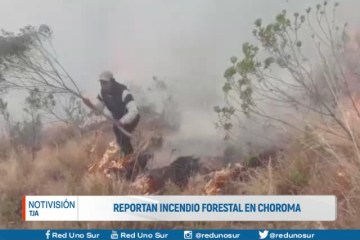 REPORTAN INCENDIO FORESTAL EN CHOROMA