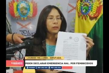 PIDEN DECLARAR EMERGENCIA NACIONAL POR FEMINICIDIOS