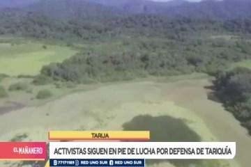 ACTIVISTAS SIGUEN EN PIE DE LUCHA POR DEFENSA DE TARIQUÍA