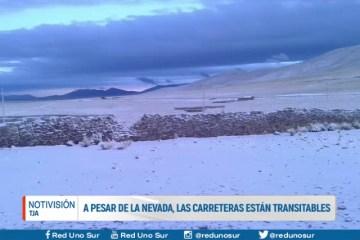 A PESAR DE LA NEVADA, LAS CARRETERAS ESTÁN TRANSITABLES