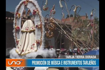 TARIJA TIERRA DORADA: LA FIESTA DE SAN ROQUE