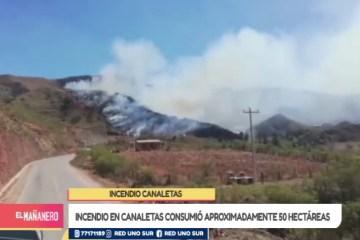 INCENDIO EN CANALETAS CONSUMIÓ APROXIMADAMENTE 50 HECTÁREAS