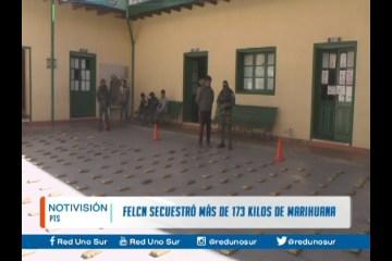 LA FELCN SECUESTRÓ MÁS DE 173 KILOS DE MARIHUANA