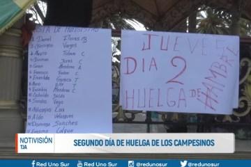 SEGUNDO DÍA DE HUELGA DE LOS CAMPESINOS