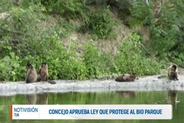CONCEJO APRUEBA LEY QUE PROTEGE AL BIO PARQUE