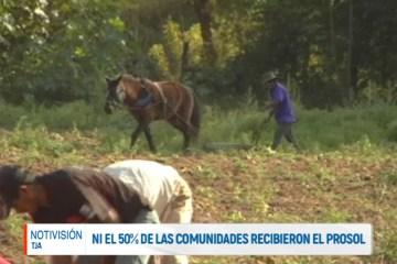 NI EL 50% DE LAS COMUNIDADES RECIBIERON EL PROSOL