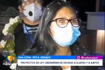 PROYECTOS DE LEY LIBERARÍAN DE DEUDAS A ELAPAS Y AAPOS