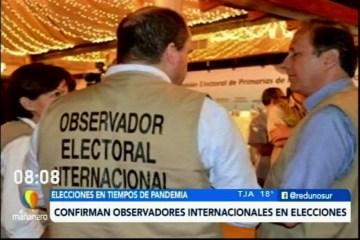 VEEDORES INTERNACIONALES EN LAS ELECCIONES 2020