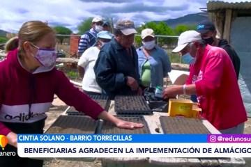 IMPLEMENTAN ALMÁCIGOS EN EL BARRIO TORRECILLAS