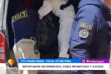 FEMINICIDIO Y DOBLE INFANTICIDIO SEGUIDO DEL SUICIDIO DEL AGRESOR