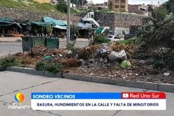 BASURA, HUNDIMIENTOS EN LA CALLE Y FALTA DE MINGITORIOS EN LA AV. GREGORIO DONOSO