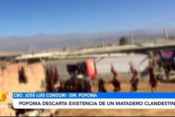 POFOMA DESCARTA EXISTENCIA DE UN MATADERO CLANDESTINO