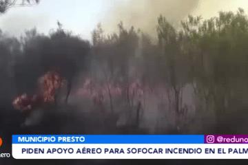 PIDEN APOYO AÉREO PARA SOFOCAR EL INCENDIO EN EL PALMAR