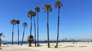 Long Beach homes