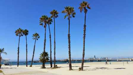 Long Beach Condos at the Beach