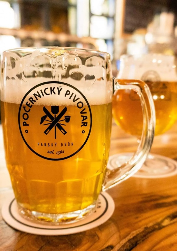The Best Beer Bar in Prague – PočernickÝ Brewery