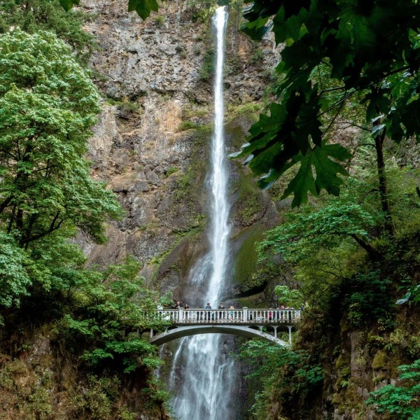 Everything You Need to Know About The 10 Most Gorgeous Waterfall Hikes in Oregon