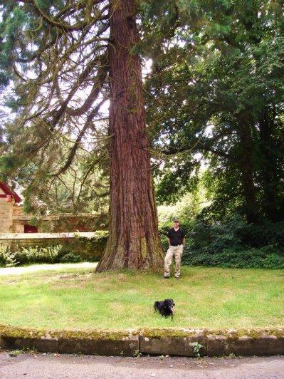 Redwood World Haltwhistle Blenkinsopp Hall Northumberland