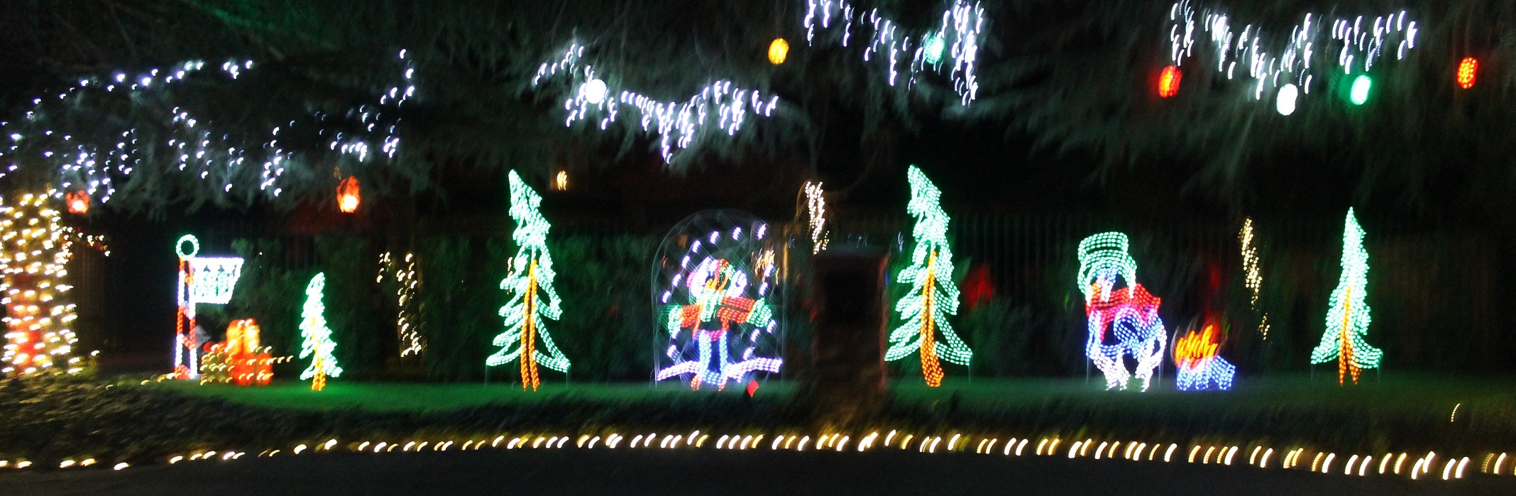 Zoo Lights Fresno Ca