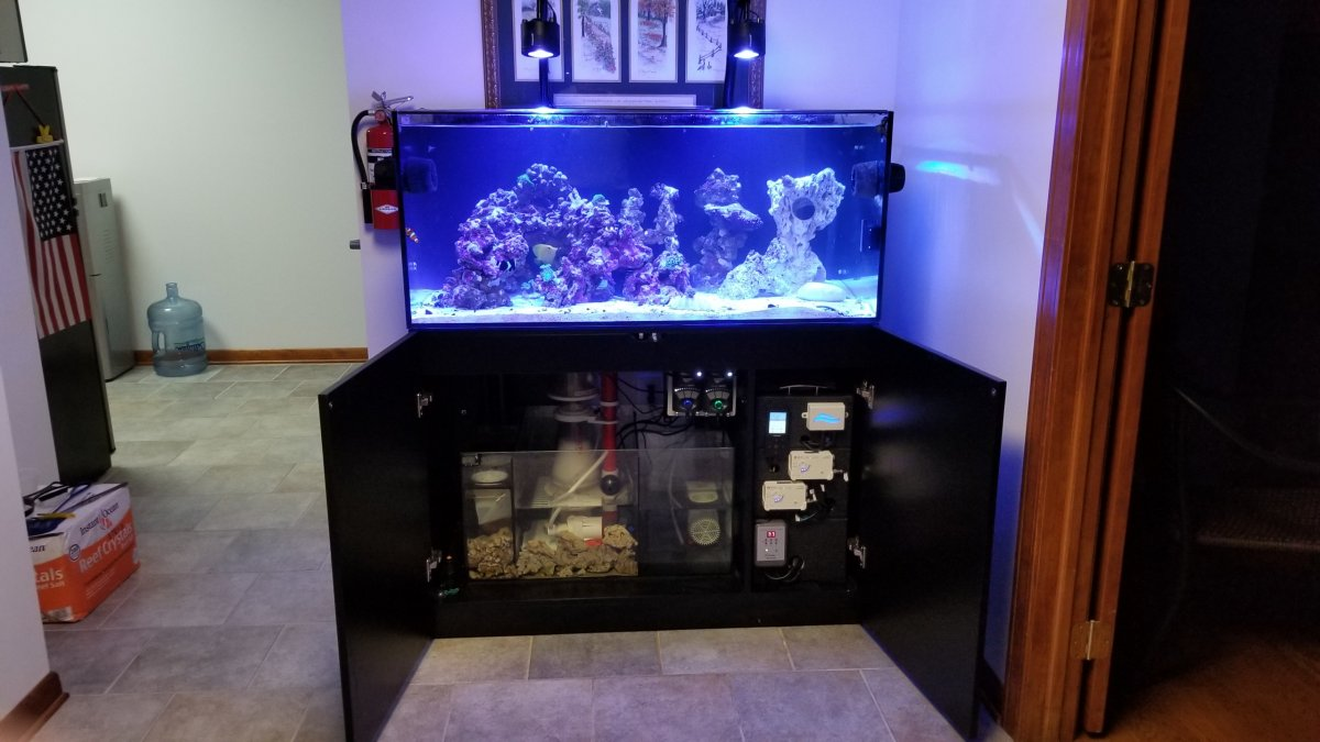 Show Off Your WaterBox Page 2 REEF2REEF Saltwater