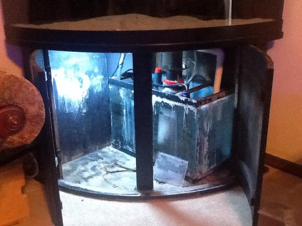 92 gallon corner tank