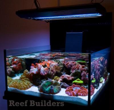 Neo Nano from Deepsea Aquatics introduces some welcome ...