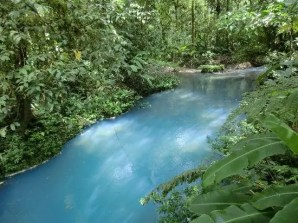 It takes about an hour to hike from the park to the Rio Celeste river
